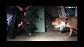 AchtVier – Was weisst du schon ft. Stik HKC (Video)
