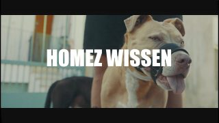 Cashmo – Homez wissen (Video)