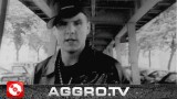 Fler – Aggroberlina (Video)