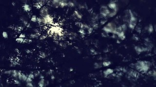 Gerard – Standby (Video)