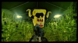 Spongebozz – Plankonweed ft. Patrick Bang (Video)