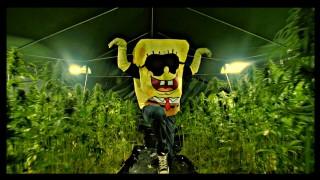 Spongebozz – Plankonweed ft. Patrick Bang (Video)